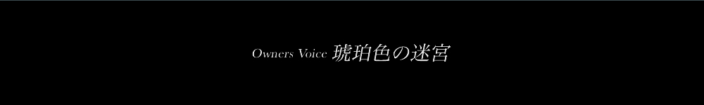 Owners Voice 琥珀色の迷宮